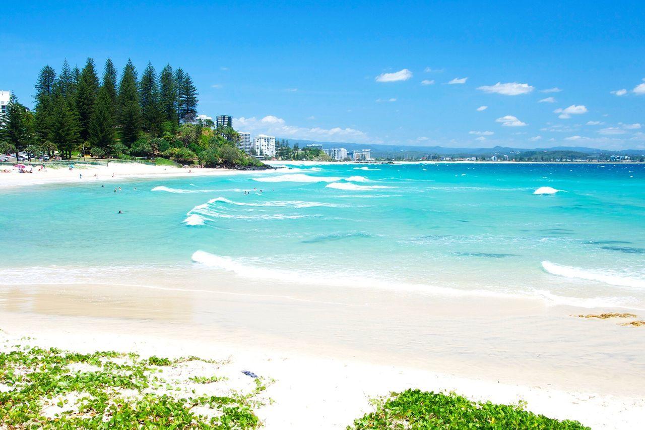 Rainbow bay Nature Beach Sea Outdoors Australia Gold Coast Beach Life
