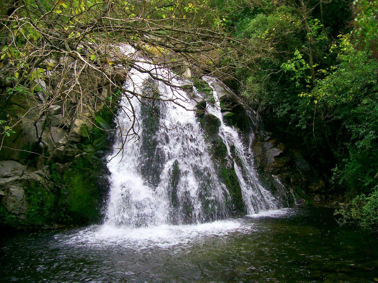 Water Waterfall Trees Green Amaizingnature Ilovewaterfalls