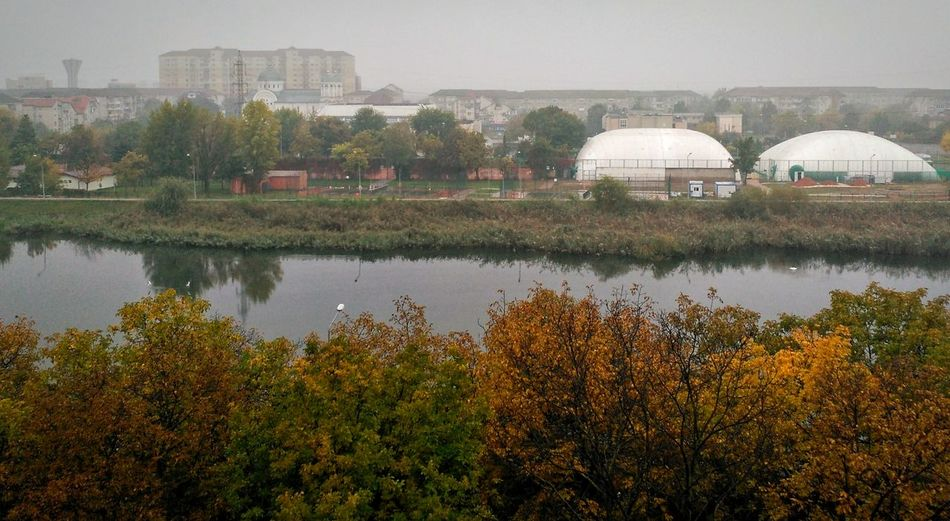 Autumn colors Tree City Water Scenics In Front Of City Life Nature Green Color Beauty In Nature Sky Foggy Greens Oradea,România