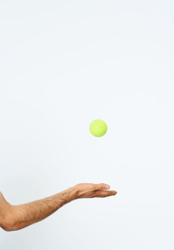 Adult Adults Only Ball Close-up Competition Copy Space Court Day Human Body Part Human Hand Mid-air One Man Only One Person Only Men Outdoors People Playing Sport Studio Shot Tennis Tennis Ball Tennis Racket White Background