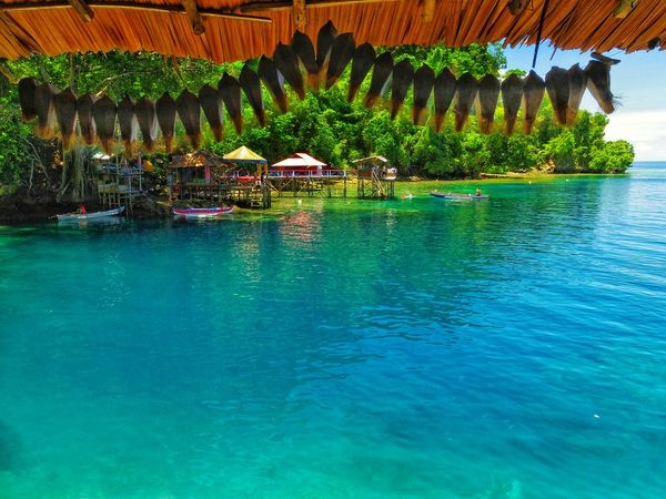 Water Swimming Pool Day No People Outdoors Built Structure Architecture Nature Beauty In Nature Tree Snorkeling AMbon Maluku Indonesia Tranquility Vacations Adventure EyeEm Nature Lover Beach Summer Cloud - Sky AmbonIsland Scuba Diving Lifestyles Water Collection  Sea And Sky EyeEmNewHere Perspectives On Nature