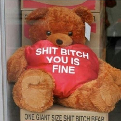 Ooh I know what I'm getting her lol Onegiantassshitbitchbear Valent inesday