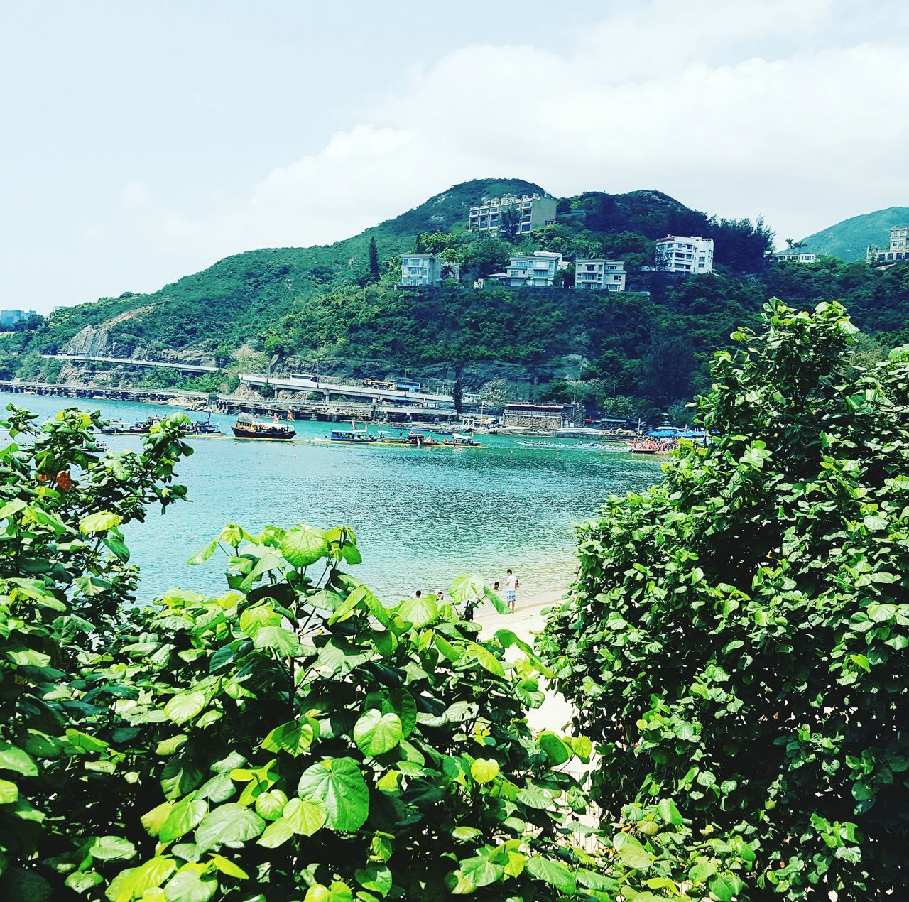 Dragonboatraces Dragonboat HongKong Beach ASIA Scenics Green Color Mountain Water Landscape Sky Day Nature Outdoors Beauty In Nature Cultures First Eyeem Photo