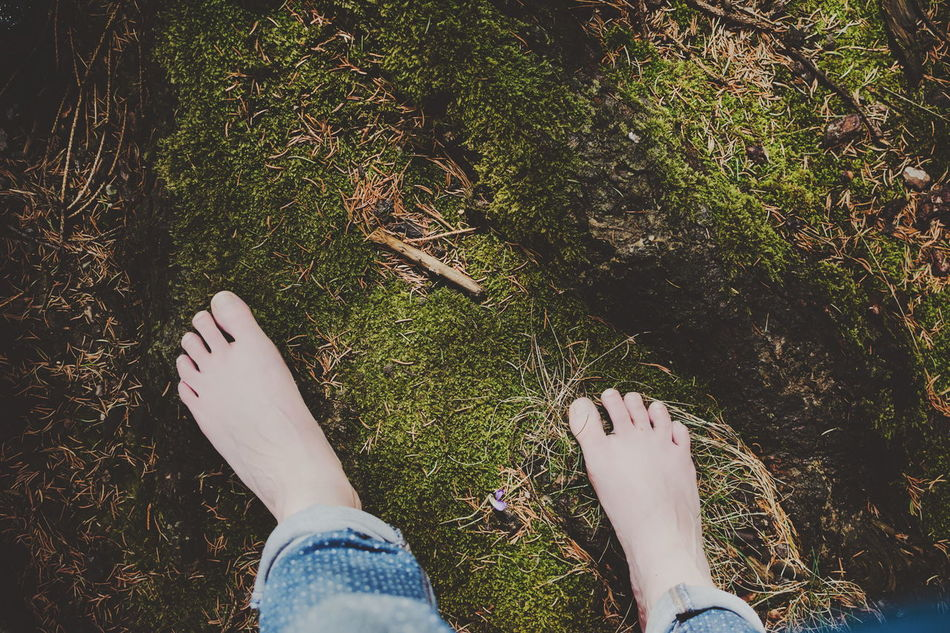 Today was raining, snowing, raining again but unexpected sun made my day Feet Forest Moss Nature Human Body Part TCPM