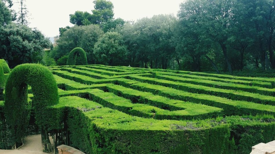 """""""El Laberinto de Horta"""" One of the most emblemathic sightseen in Barcelona. Must be seen.. Barcelona Landscape Parks Green Color Laberinto"""