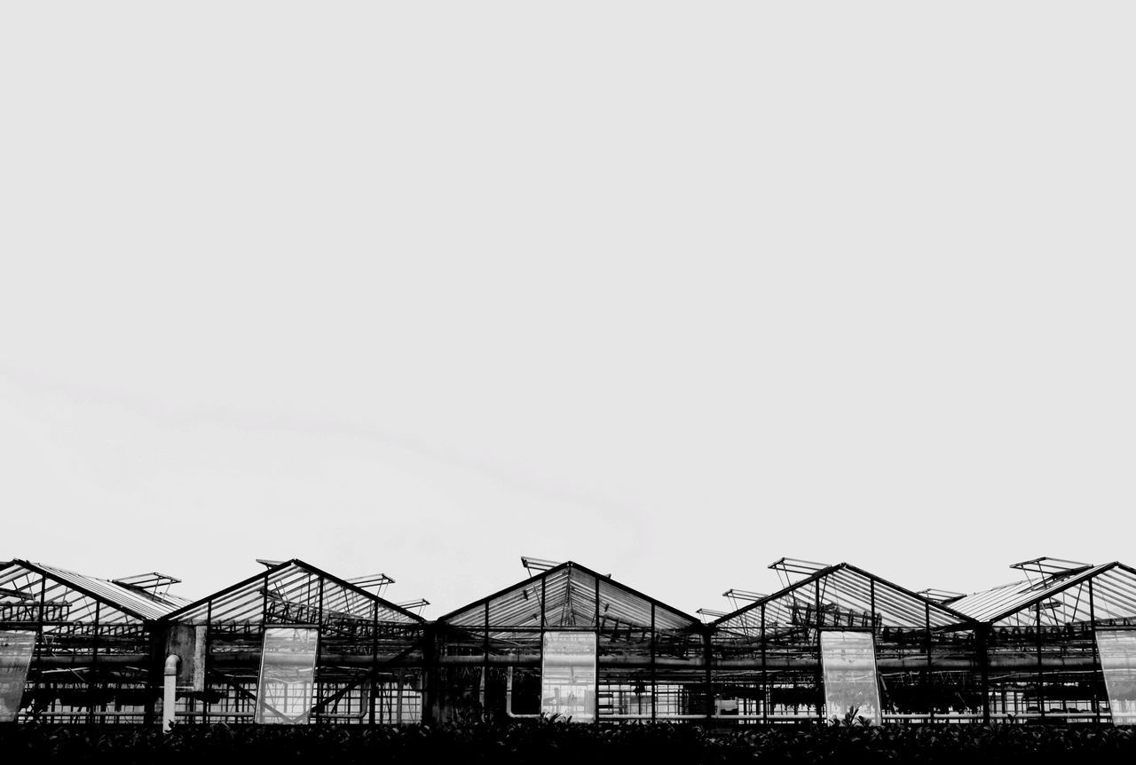 Row Of Green Houses