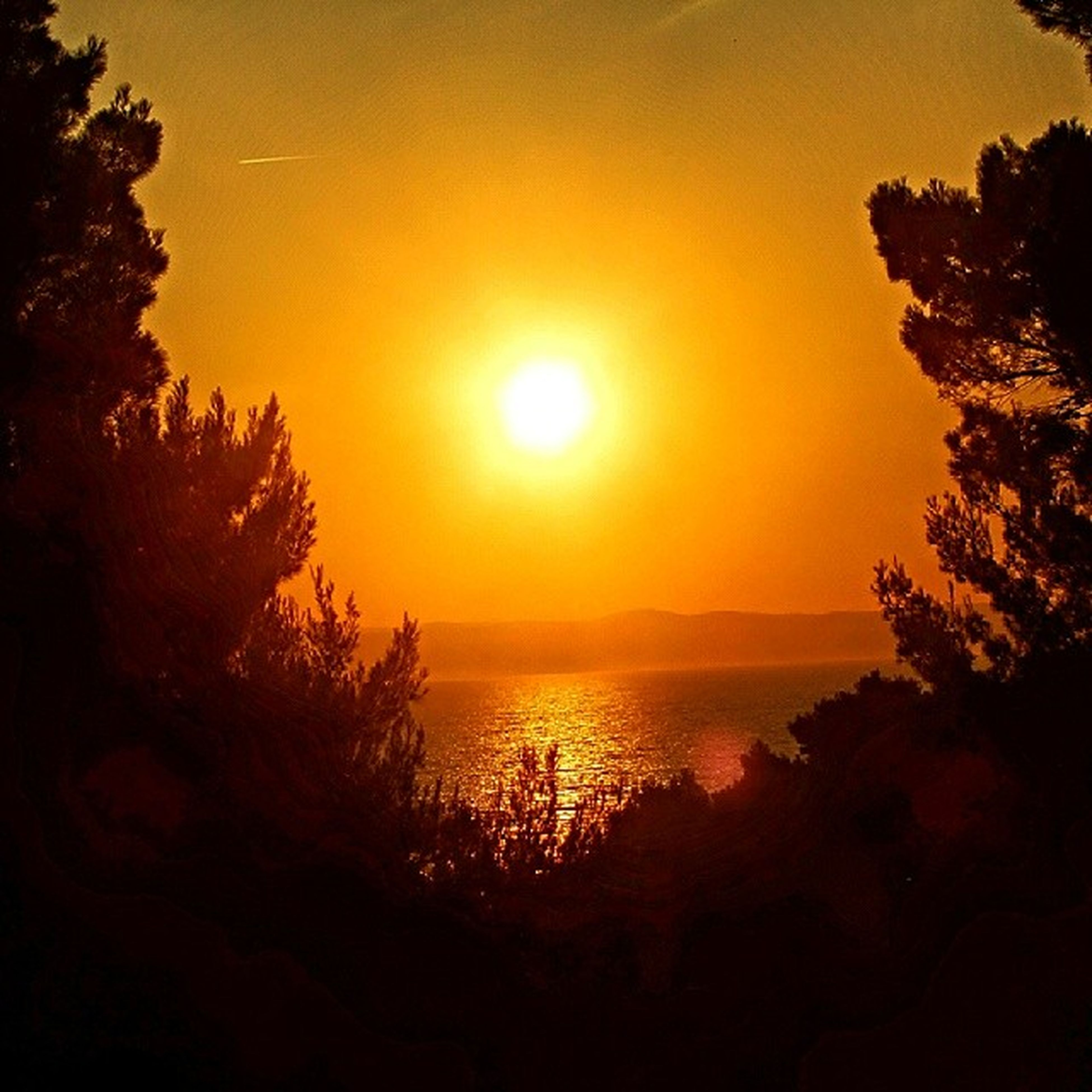 sunset, sun, tranquil scene, scenics, sea, tranquility, water, beauty in nature, horizon over water, silhouette, orange color, tree, sky, idyllic, nature, sunlight, reflection, beach, majestic, outdoors
