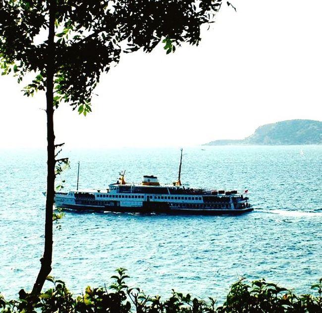 Boat Sea Prinkipo Büyükada Princeislands Prince Islands