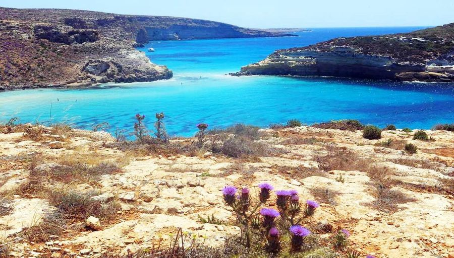 Lampedusa  Nel Blu Dipinto Di Blu. Colori Odori e Sapori. L'isola Che Non C'è