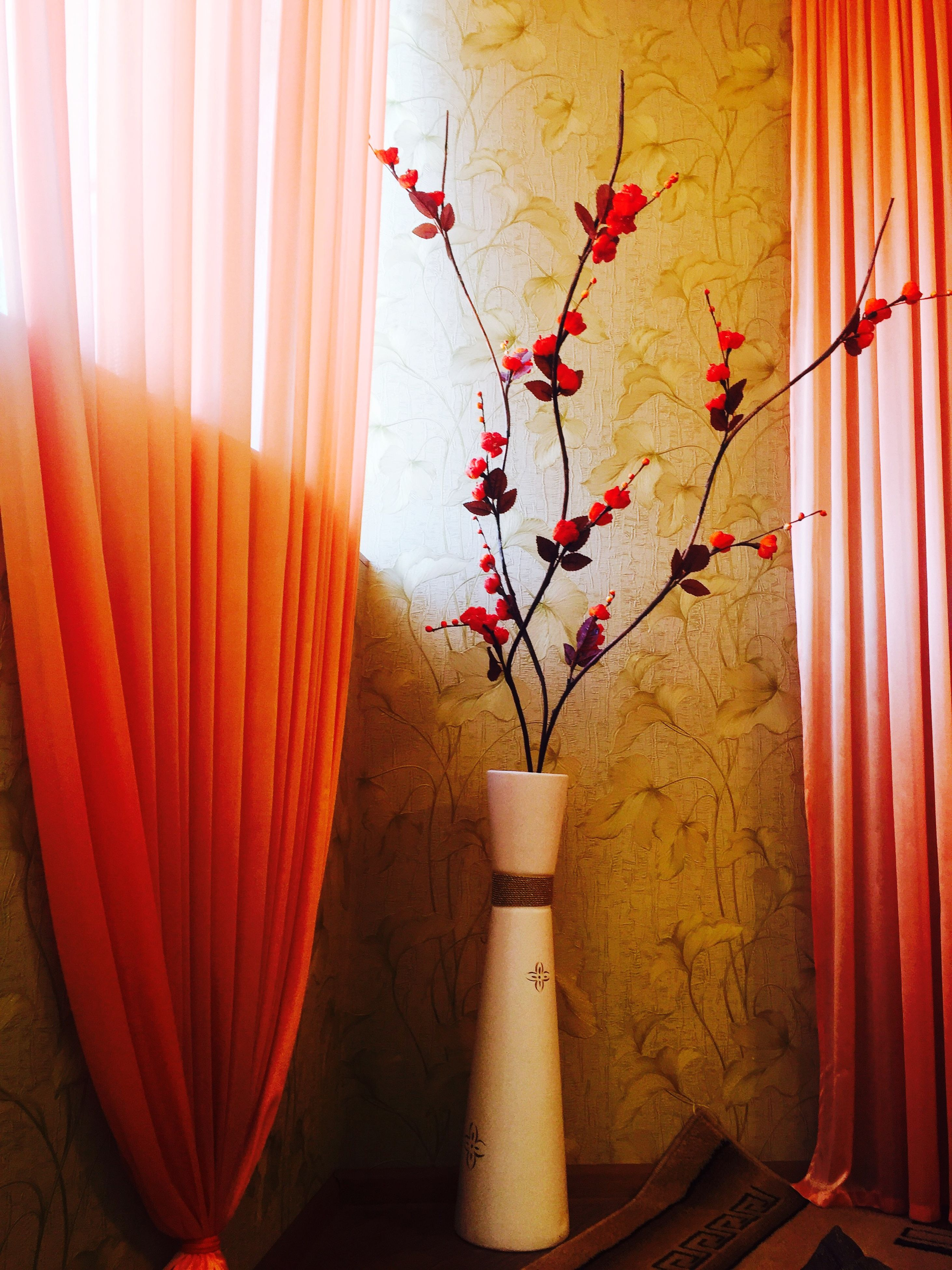 indoors, flower, decoration, wall - building feature, hanging, red, wall, built structure, home interior, architecture, no people, potted plant, house, vase, plant, curtain, day, wood - material, growth, close-up