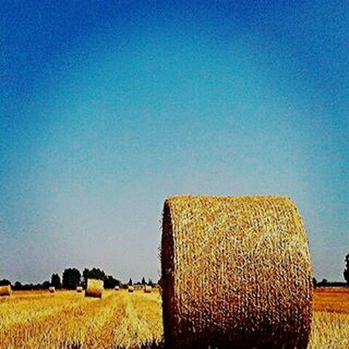 Lato Taken From Smartphone Camera HTC DESIRE 300