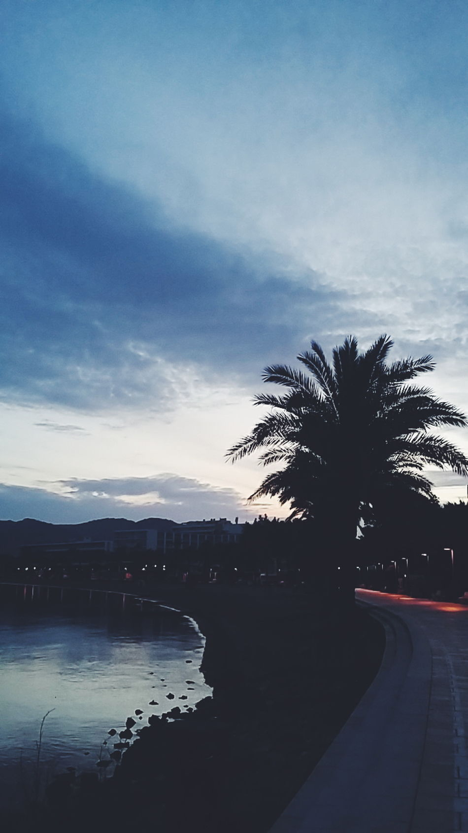Ibiza Sant Antoni De Portmany Reflection Tree Sunset Water Sky Outdoors Nature No People Day