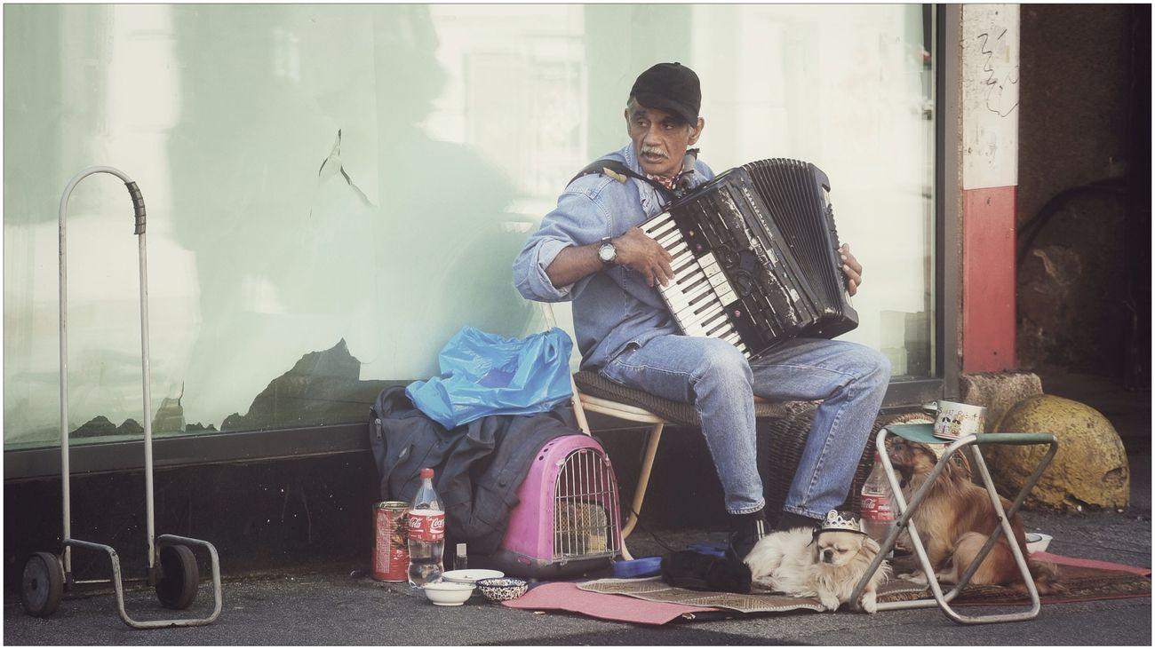 Etude for accordion and two pekingese Nikon 1 V1 Zagreb Tak Imam Te Rad The Portraitist - 2014 EyeEm Awards