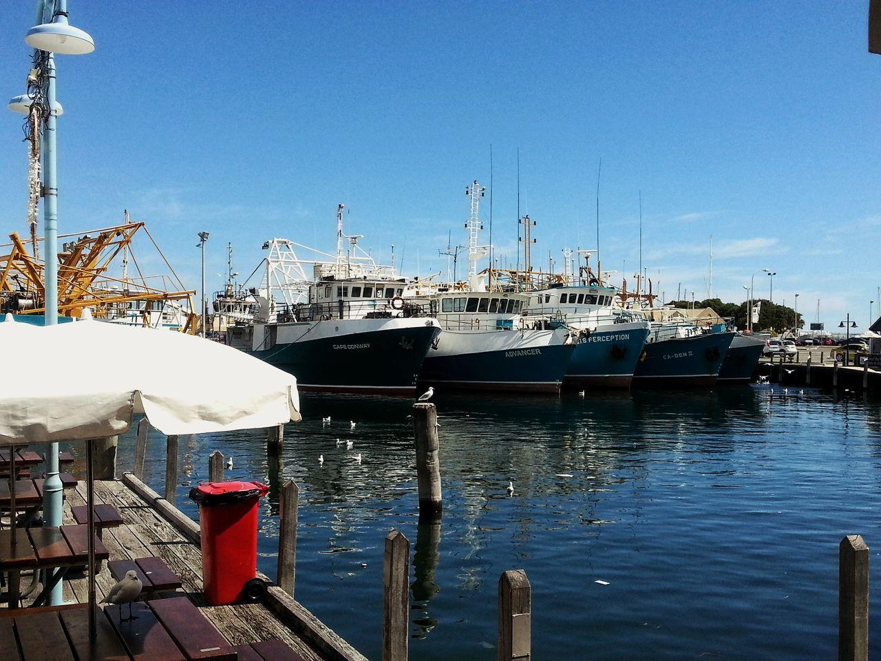Fishing Boat Fleet Sea And Sky Seabirds Pier Dockside Ships Boats EyeEmNewHere Sunny Day 🌞 Jetty, Pier Fishing Boat Harbour EyeEmNewHere
