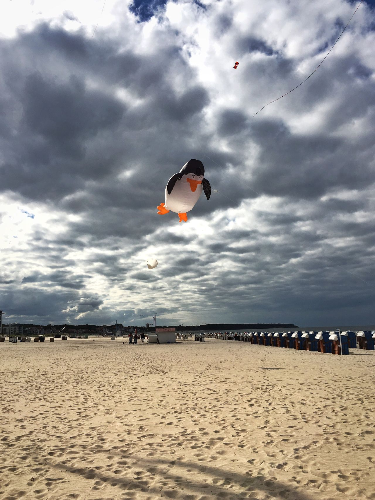 Kite Flying Animals Flying Penguin Penguin Penguin ♡ PenguinLove Skyporn Clouds And Sky Warnemünde Beach Autumn Sand Tranquil Scene Tranquility Cloud - Sky Sky Vacations Incidental People Cloud Tourism People And Places My Favorite Place Nature Flying My Year My View