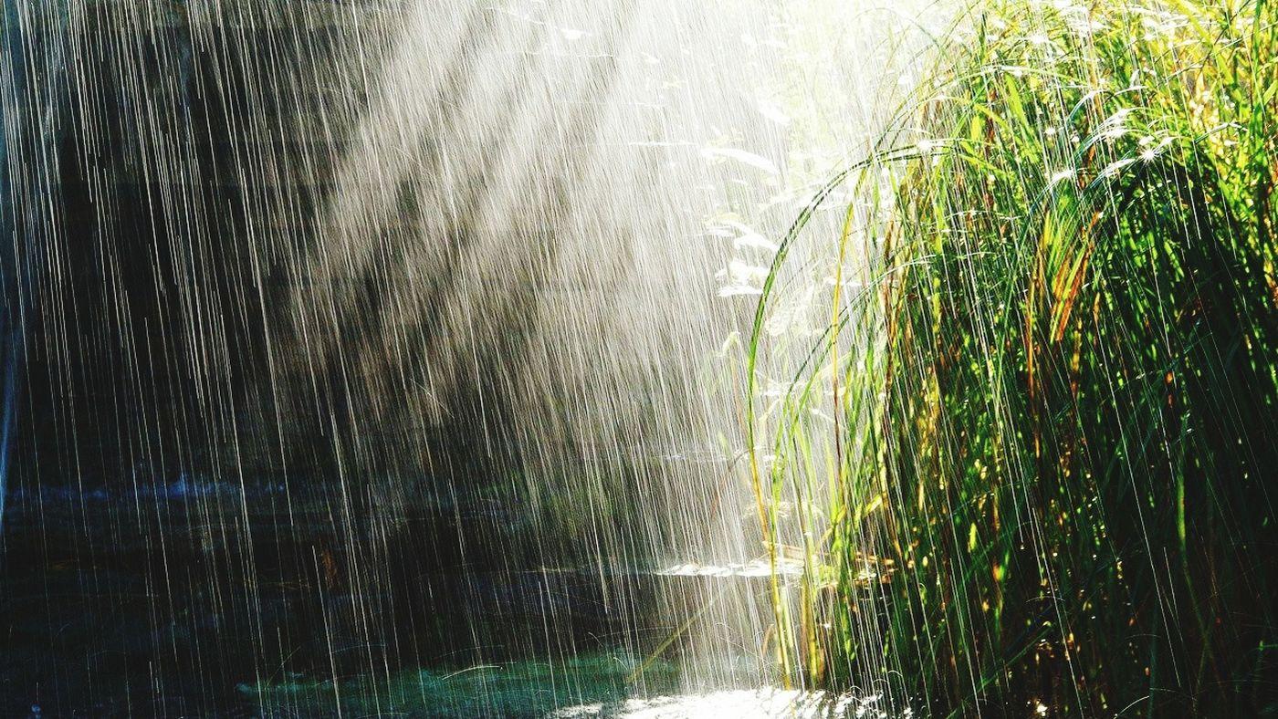 ¥£§ дощ