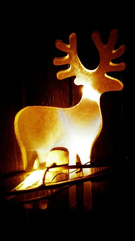 Gold Colored Illuminated Close-up Christmas Time Christmas Around The World Christmas Decorations Christmas Christmas Lights Maximum Closeness Bokeh Christmaslights Christmas Is Coming. ♥ Christmas Ornament Autumn 2016 November2016 The Places I've Been And The Things I've Seen Backgrounds Silhouette Deer