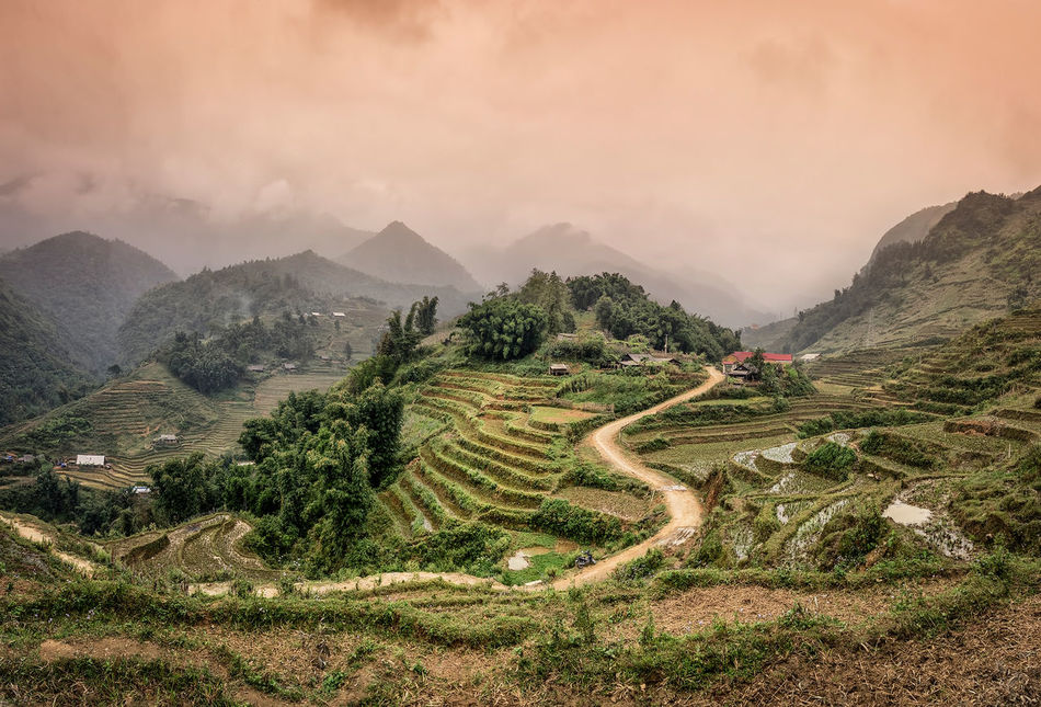 Beautiful stock photos of vietnam, Agriculture, Beauty In Nature, Cloud - Sky, Day