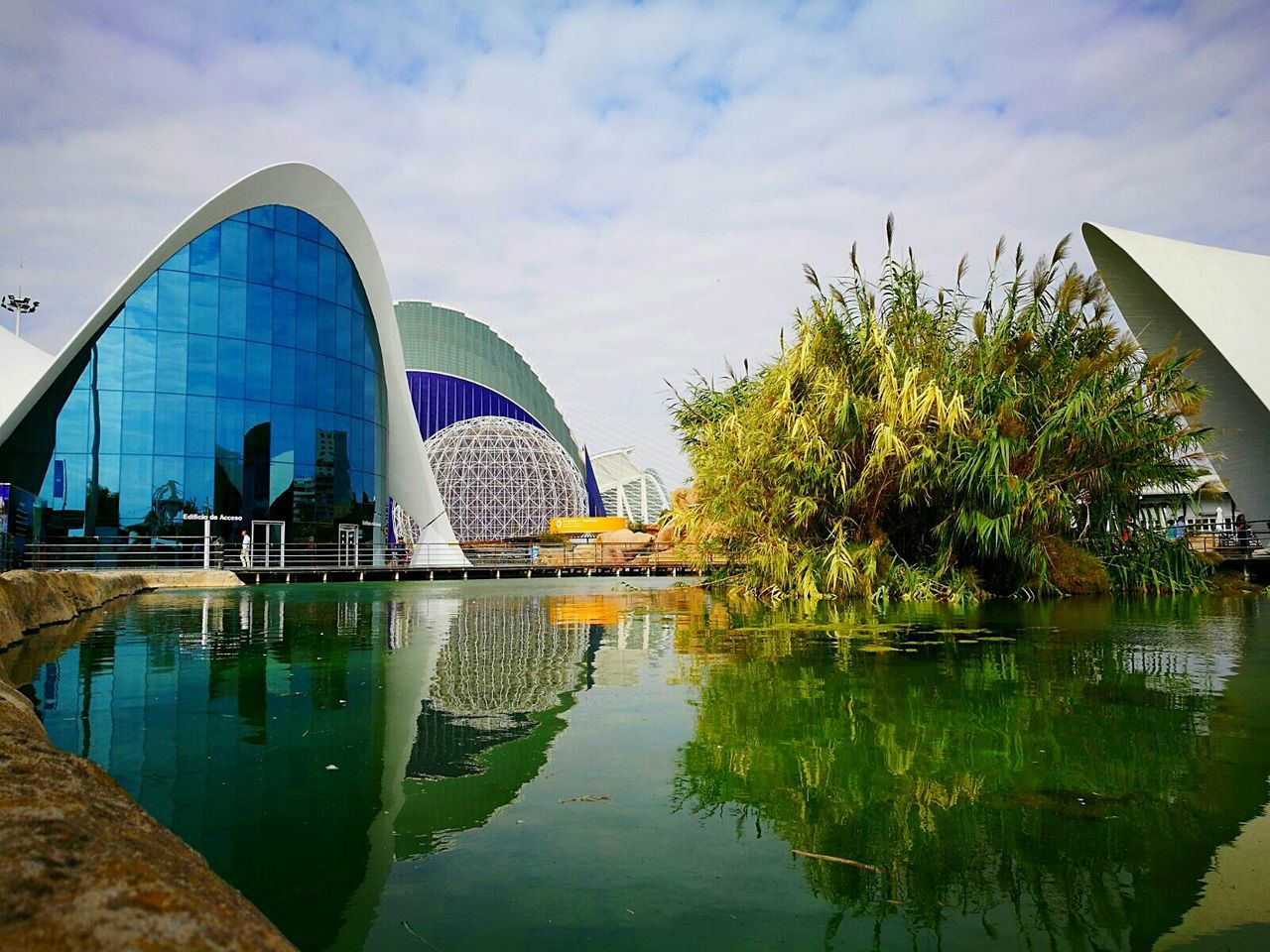 Valencia, Spain Oceanographic Travel Destinations Architecture Water Modern Travel No People Holiday♡