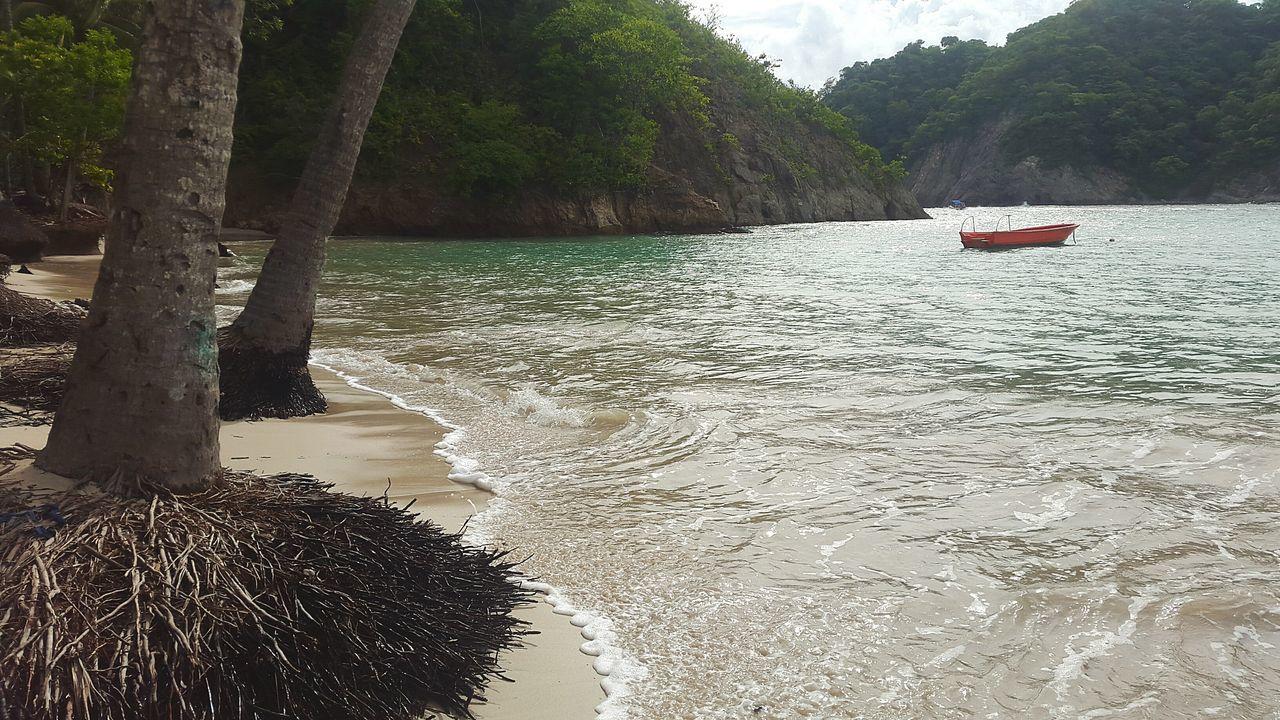 Beach Costa Rica Traveling Photograph Puntarenas EyeEm Best Shots Tortuga Costa Day At The Beach Anastasia