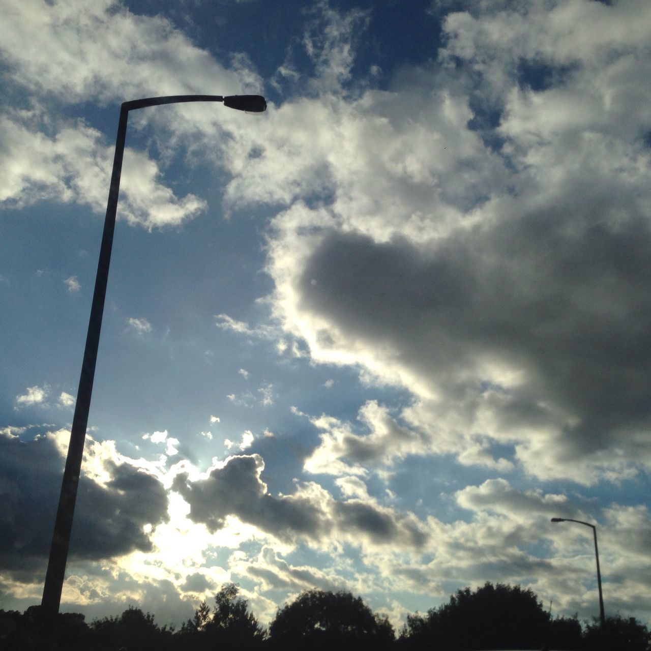 sky, cloud - sky, low angle view, no people, outdoors, day, nature, tree