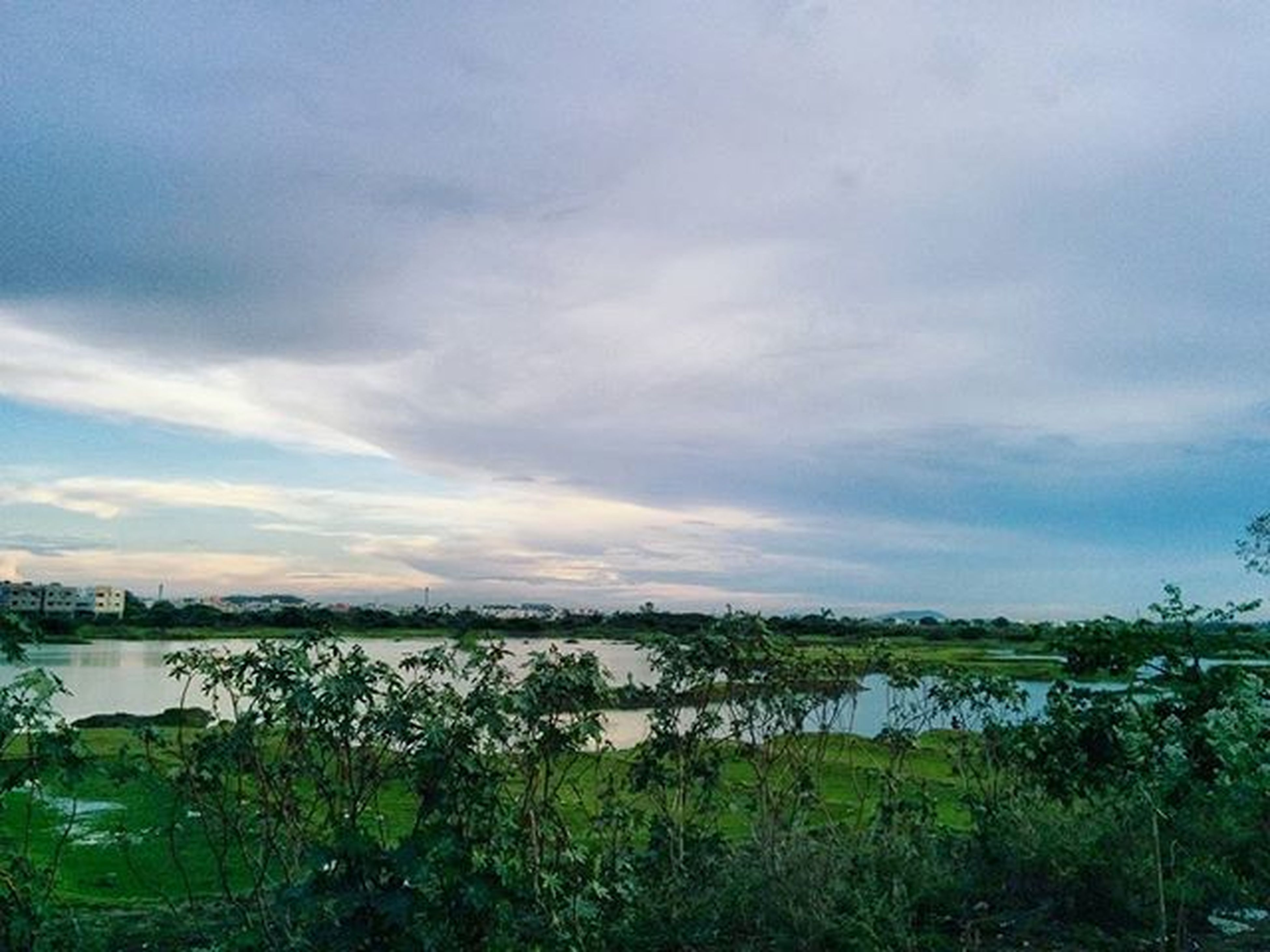 water, sky, tranquil scene, tranquility, lake, cloud - sky, scenics, beauty in nature, grass, nature, plant, cloudy, cloud, growth, river, idyllic, reflection, lakeshore, tree, no people