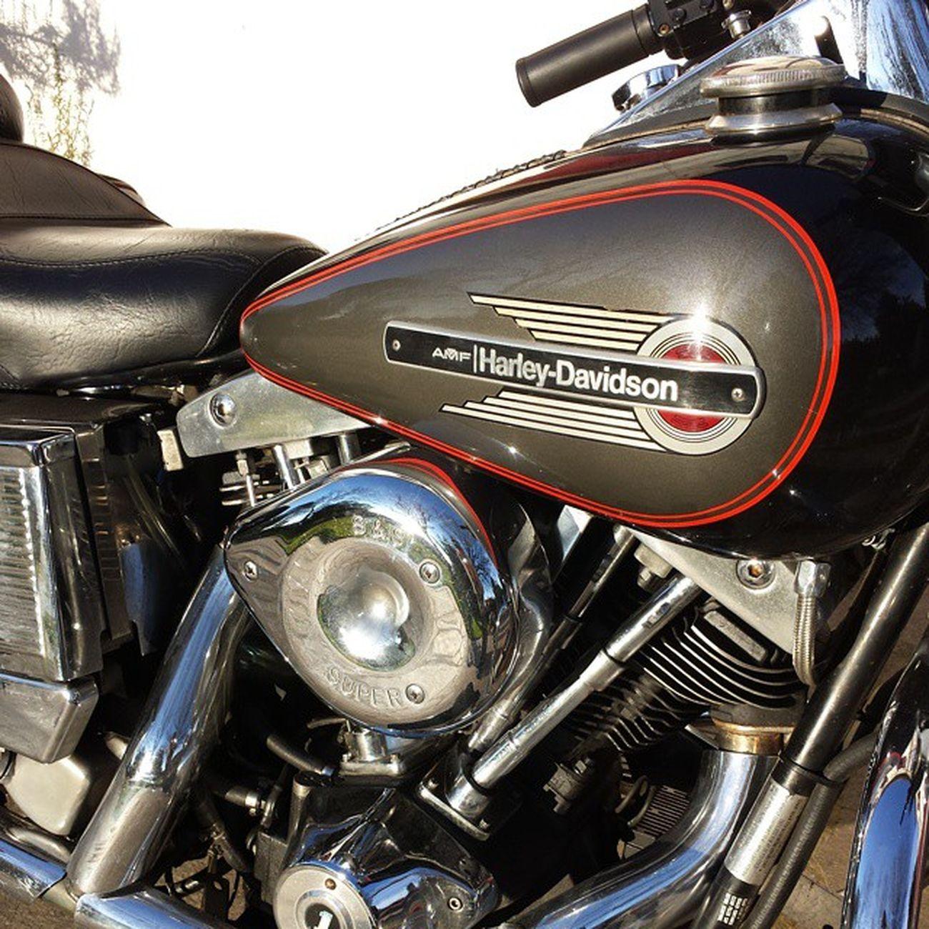 My hd... Harley Harleydavidson Shovelhead Flh