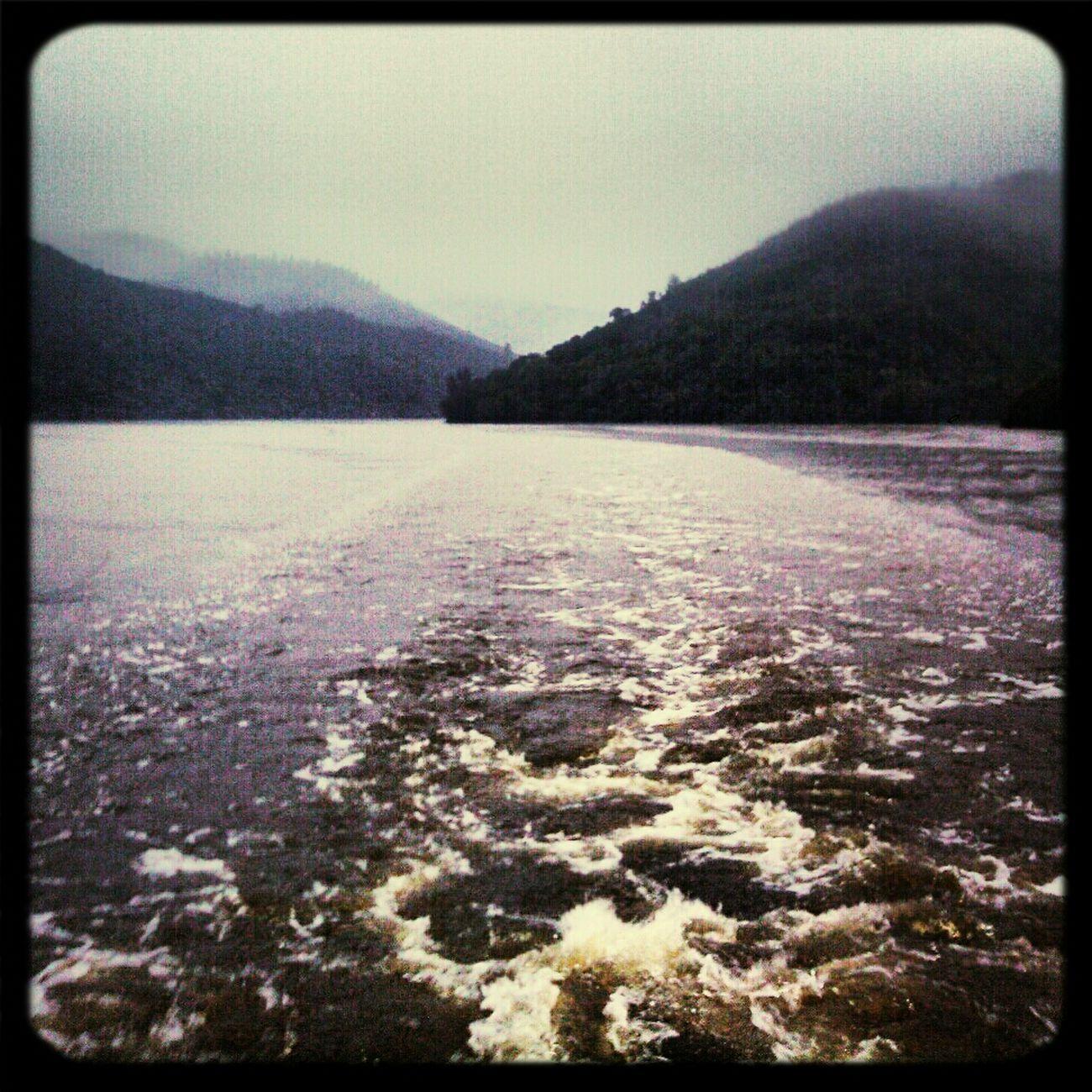 Estela En El Río