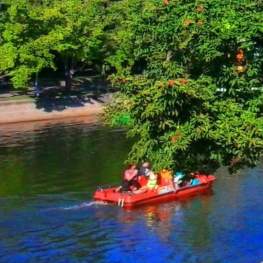 flow Boat River Orange Trees park garden natural botanical trip travel people nature bega timisoara naturelovers outdoors autumn september 2013 water green
