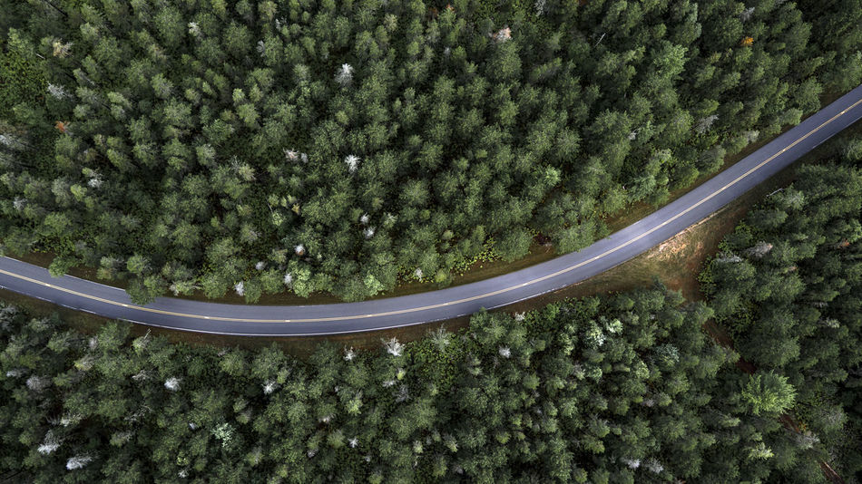 Beautiful stock photos of forest, Large Group Of Objects, Munising, United States, aerial View
