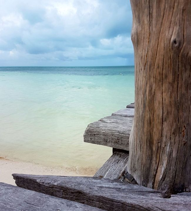 Beach Sea Sand Horizon Over Water Sky Cloud - Sky Nature Water Beauty In Nature Outdoors Day Travel Destinations Isla Contoy Scenics Island Weathered Wood Backgrounds Sea And Sky Tropical Climate Ocean View View Landscape Island In The Sea Travel Photography Mexico