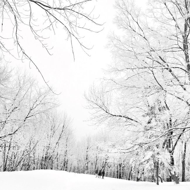 HNY 2016 EyeEm Best Shots - Black + White Snow ❄ Winter Blackandwhite It's Cold Outside