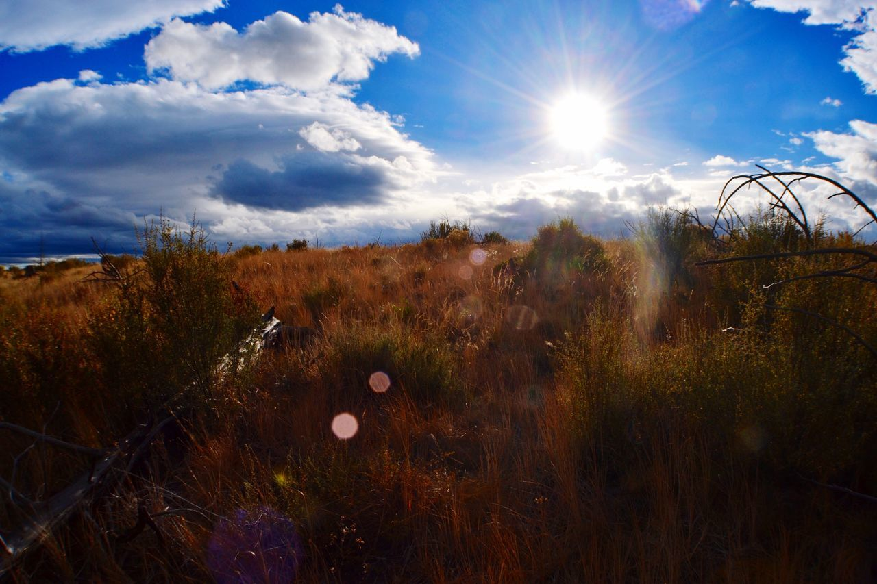 Sunset Wide Angle Sunbeam Sunlight Lens Flare Cloud - Sky Tranquil Scene Beauty In Nature Scenics Uncultivated Lizzie.Elise.Phillips Nature Photography Bendoregon PNW No People Sagebrush HighDesert
