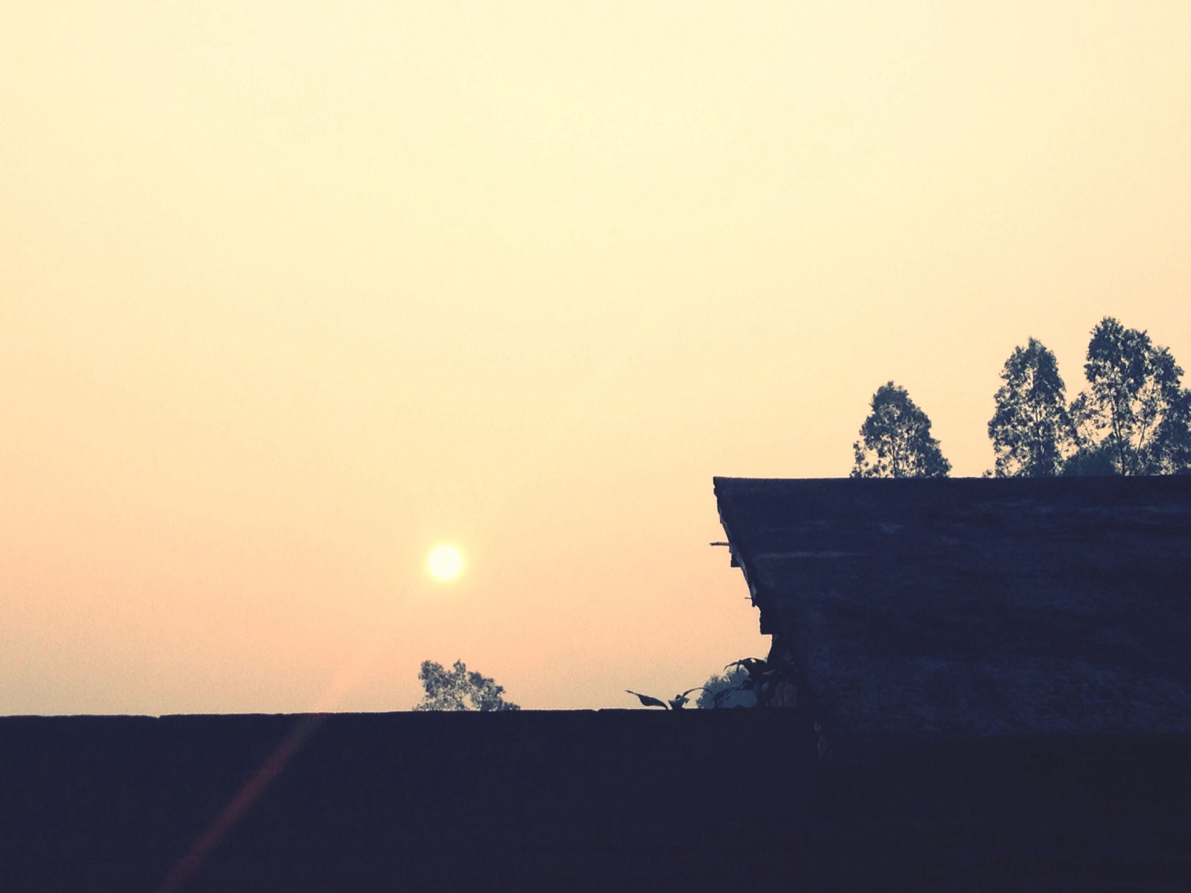 silhouette, sunset, copy space, clear sky, tree, tranquility, tranquil scene, low angle view, beauty in nature, nature, sun, built structure, sky, scenics, building exterior, architecture, outline, dusk, outdoors, no people