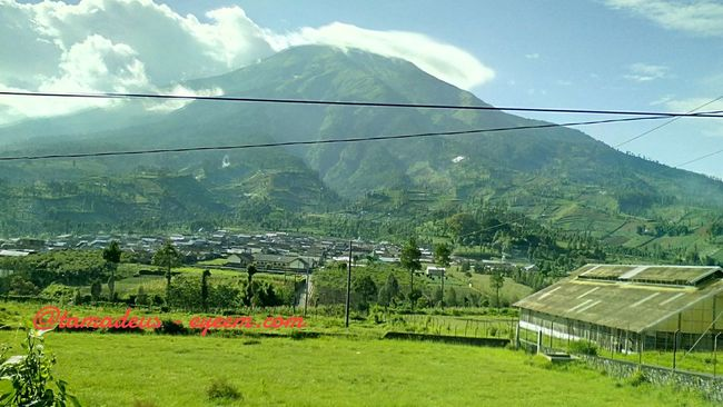 The magnificent Sindoro Mountain in Wonosobo, Jawa Tengah Indonesia. Mountain View Nature Green Eyeemindonesia Temanggung Wonosobo Sindorosumbing Mountain INDONESIA Nofilter