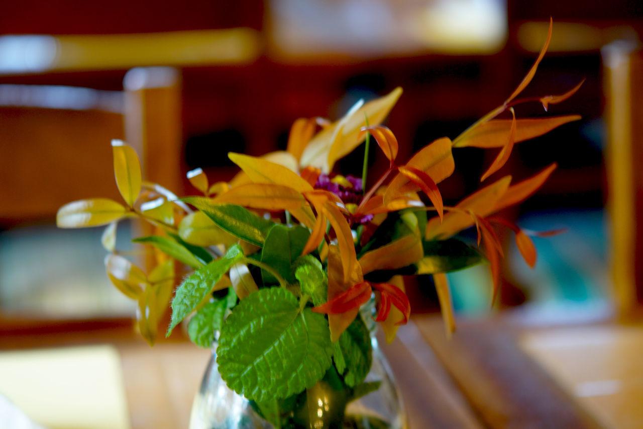 decor piece Arrangement Center Piece Ethnic Ethnicwear Flower Flower Arrangement Glass Piece Oregano Table Arrangement