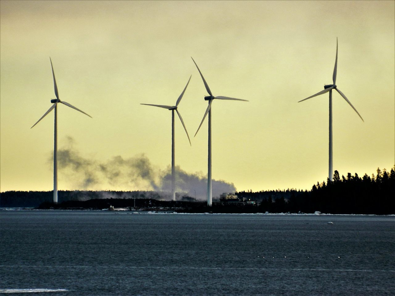 Wind Turbine Alternative Energy Wind Power Environmental Conservation Fuel And Power Generation Windmill Renewable Energy No People Electricity  Technology Outdoors Sky Industrial Windmill Nature Day Seascape Photography Seashore Seaside Seascape Landscape_Collection Cold Temperature Ice Landscape Sea Water