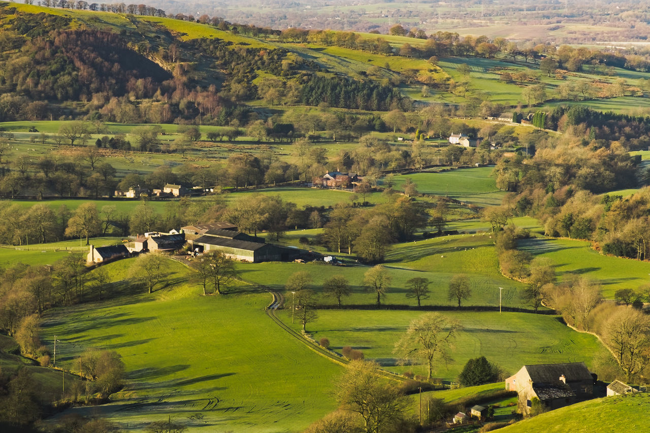 Aerial View Agriculture Beauty In Nature Cheshire Day England Farm Field Green Color Landscape Nature No People Outdoors Patchwork Landscape Rural Scene Scenics Terraced Field Tree