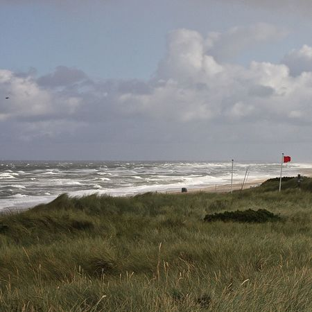 Strand Kampen, Sylt Amazing Beach Beauty In Nature Clouds Coastline Dunes Eyem Best Shots Grass Horizon Over Water Kampen Nature Northsea Red Flag Scenic View Scenics Sea Seagull Seascape Shore Sky Sylt Tranquil Scene Water Waves