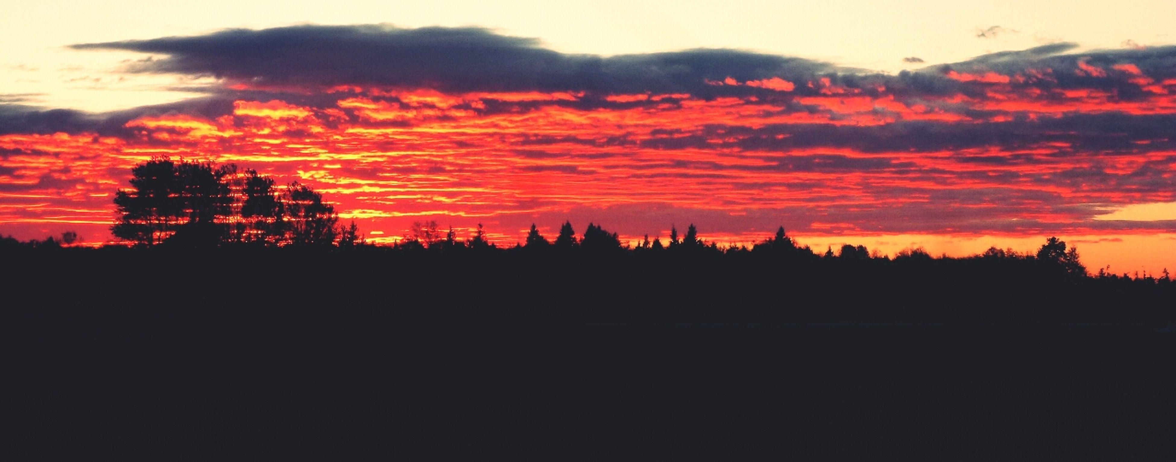sunset, silhouette, tranquil scene, scenics, tranquility, beauty in nature, orange color, sky, tree, nature, idyllic, landscape, cloud - sky, dark, outdoors, no people, non-urban scene, majestic, dramatic sky, non urban scene