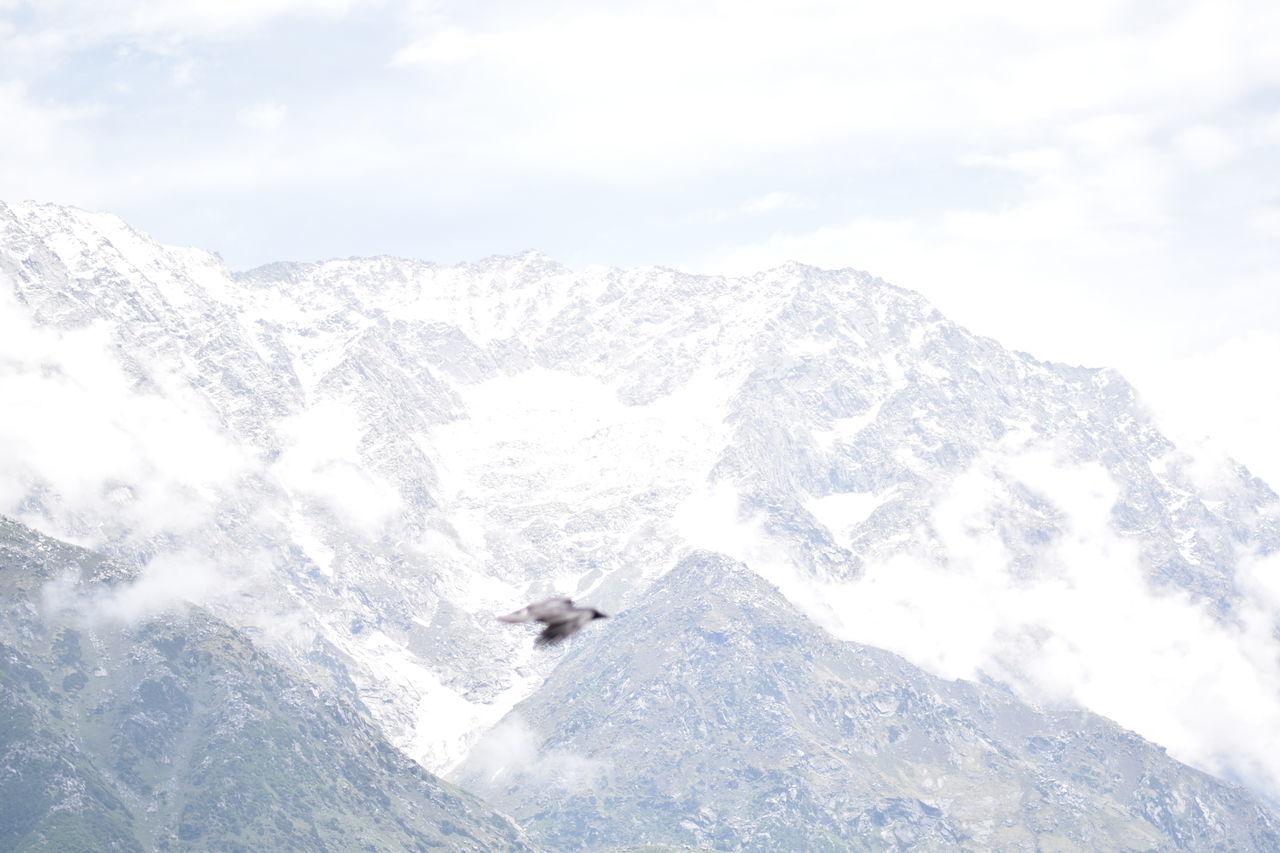 SnowLineCafe Cold Weather Himalayan Range Trekking Dhauladhars Himachalpradesh Mcleodganjdiaries India Feel The Journey