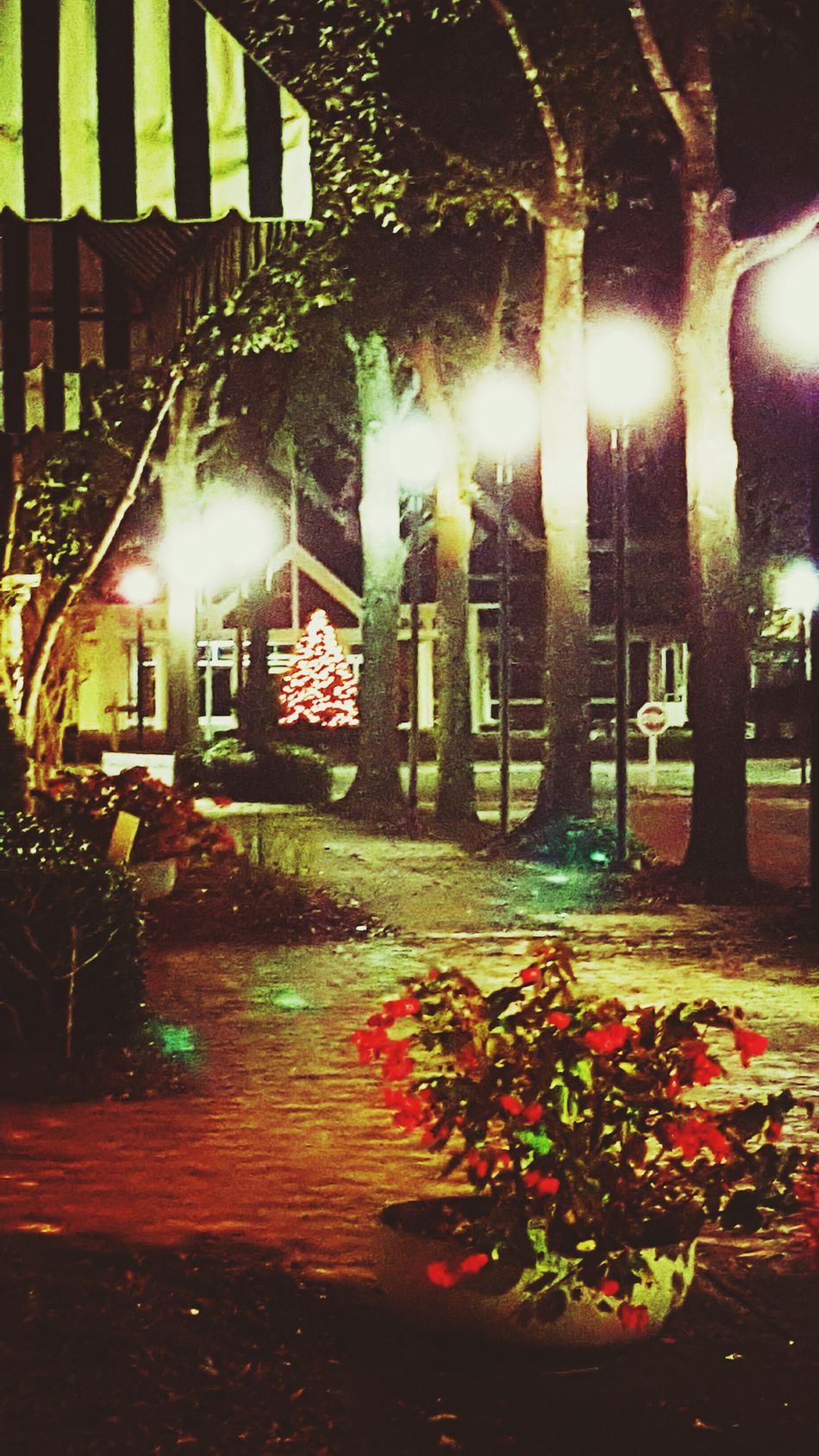 The Last Christmas At The Landings