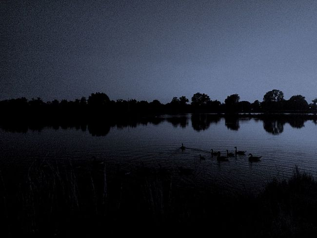 Breathing Space Taking Photos Portrait No People Water Reflection Lake Night Nature Beauty In Nature Scenics Outdoors Animals In The Wild Bird Tree Silhouette Sky Animal Themes Ducks Ducks At The Lake Reflection_collection Reflection EyeEm Selects Photography Lake View This is where I go when I need to relax , distress or just breath. I just take in scenery at the nearby waters or throw a pole in and fish. If I am by myself or with friends, it's the perfect place to get ahold of all your thoughts! 🦆 The Week On EyeEm