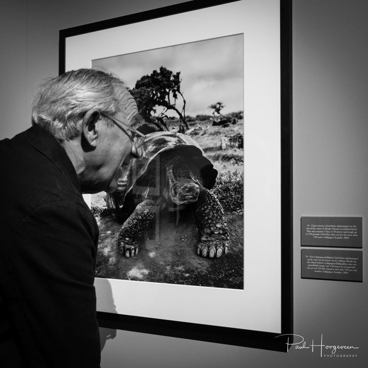 Age is relative Admiration Animal Themes B&w Blackandwhite Bw Day Elderly Eyeglasses  Indoors  Interesting Mammal Man Monochrome Museum One Animal One Person People People Watching Real People Smile Squareformat