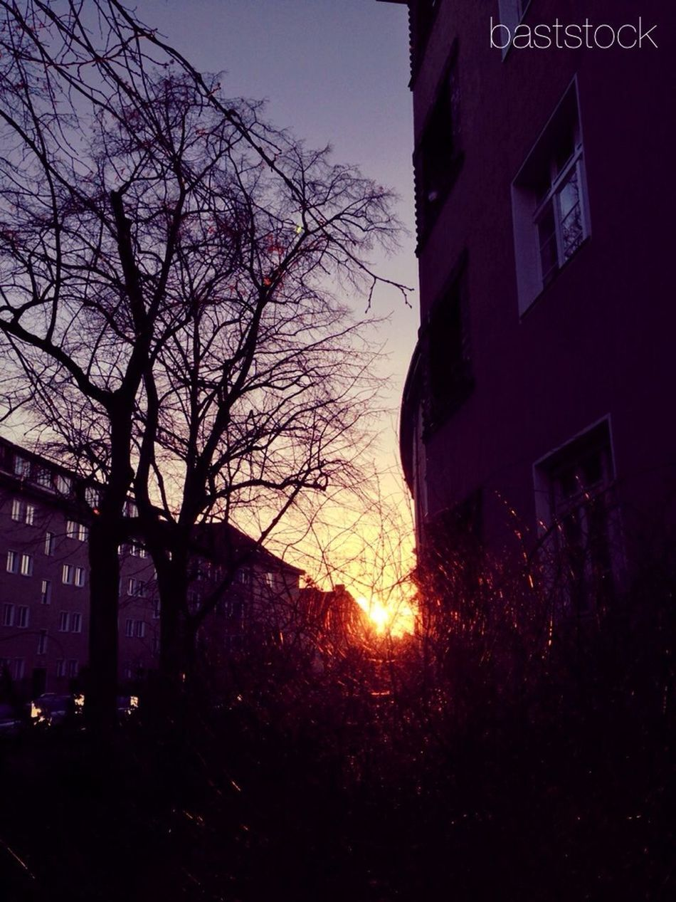 Sunset Sun_collection Enjoying The Sun EyeEm Best Shots