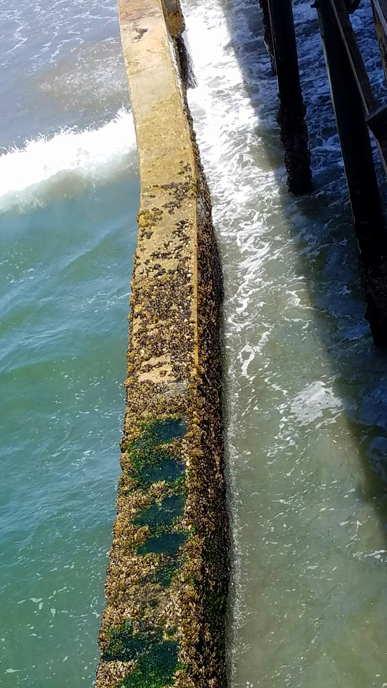 Break Wall Ocean Art Is Everywhere Lines Natural Beauty Outdoors Water No People Sea Copy Space Meditation Peaceful Wood Pier Angle Minimalism Abstract Light Inspirational Traquility Multicolor Faded Contrast Gold Algea Moss