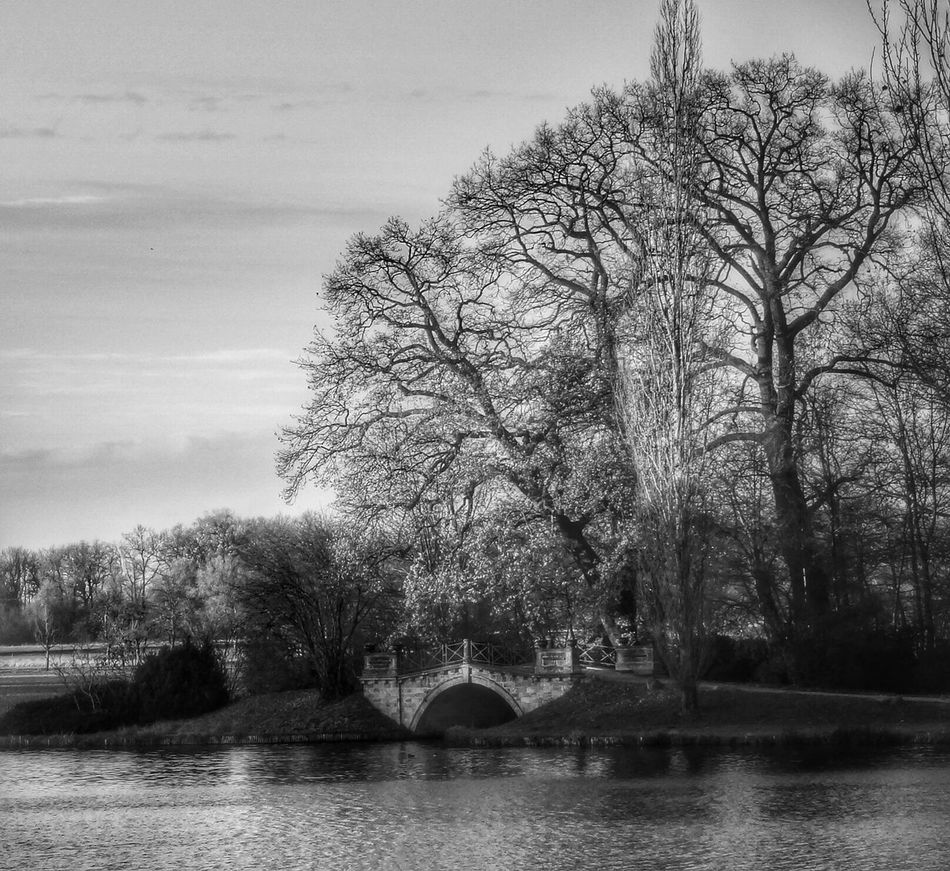 Wörlitz EyeEm Best Shots - Black + White Blackandwhite Monochrome