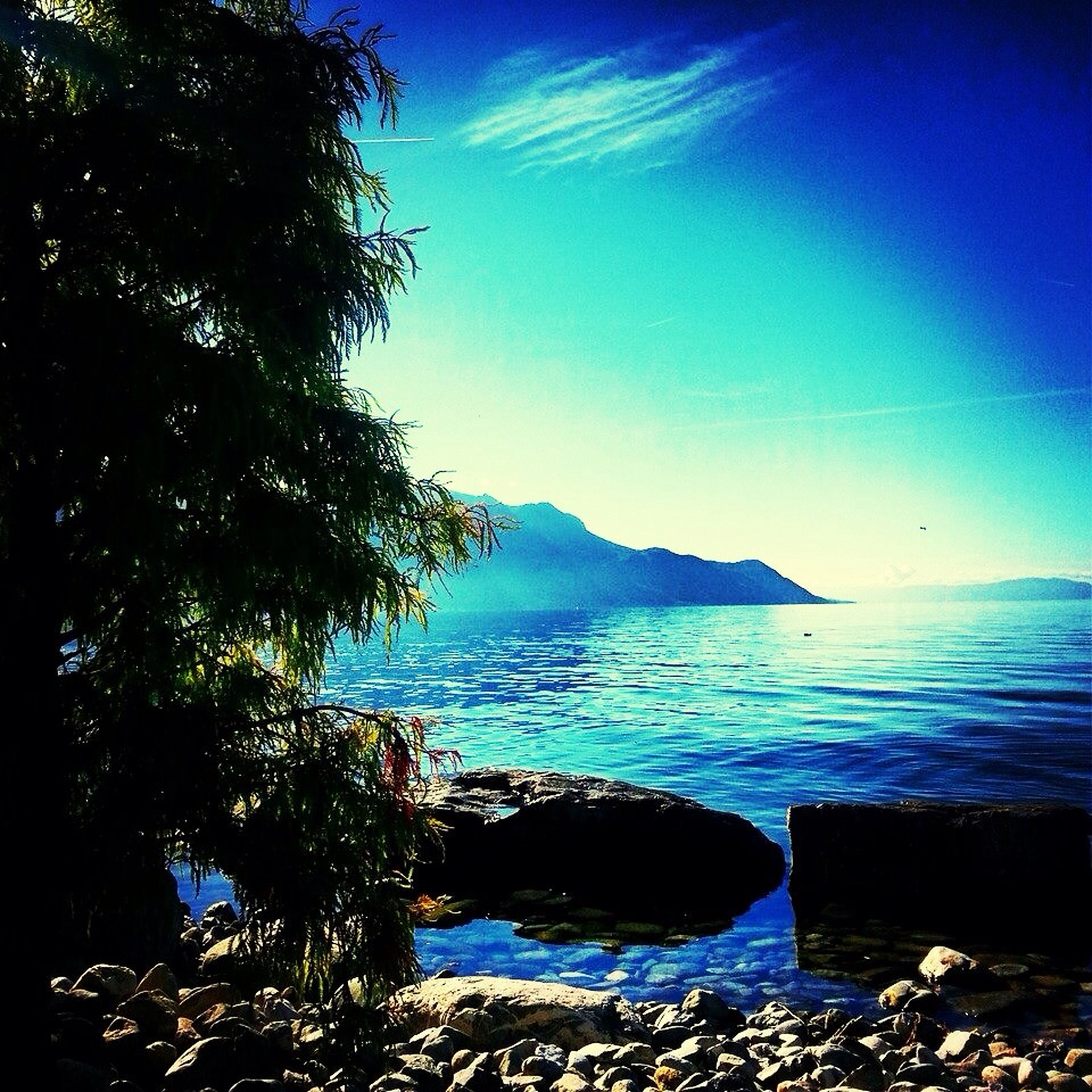 water, blue, sea, tranquil scene, scenics, tranquility, beauty in nature, sky, nature, tree, horizon over water, mountain, idyllic, beach, clear sky, shore, sunlight, coastline, rock - object, outdoors