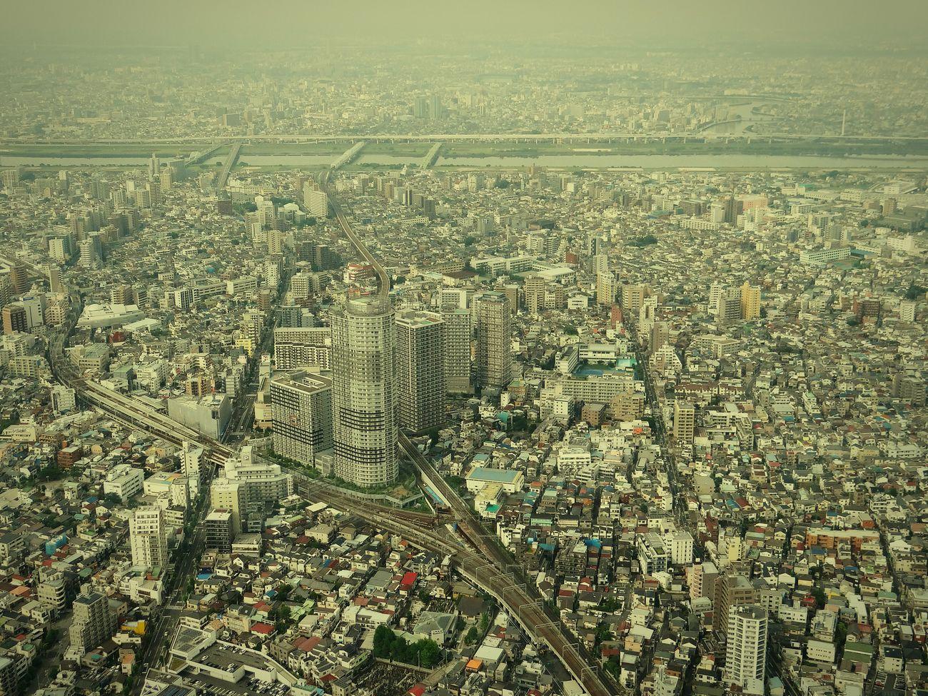 A Bird's Eye View Bilding City City View  Tokyo City View Tokyo,Japan Hello World EyeEm Best Shots スカイツリー 展望台