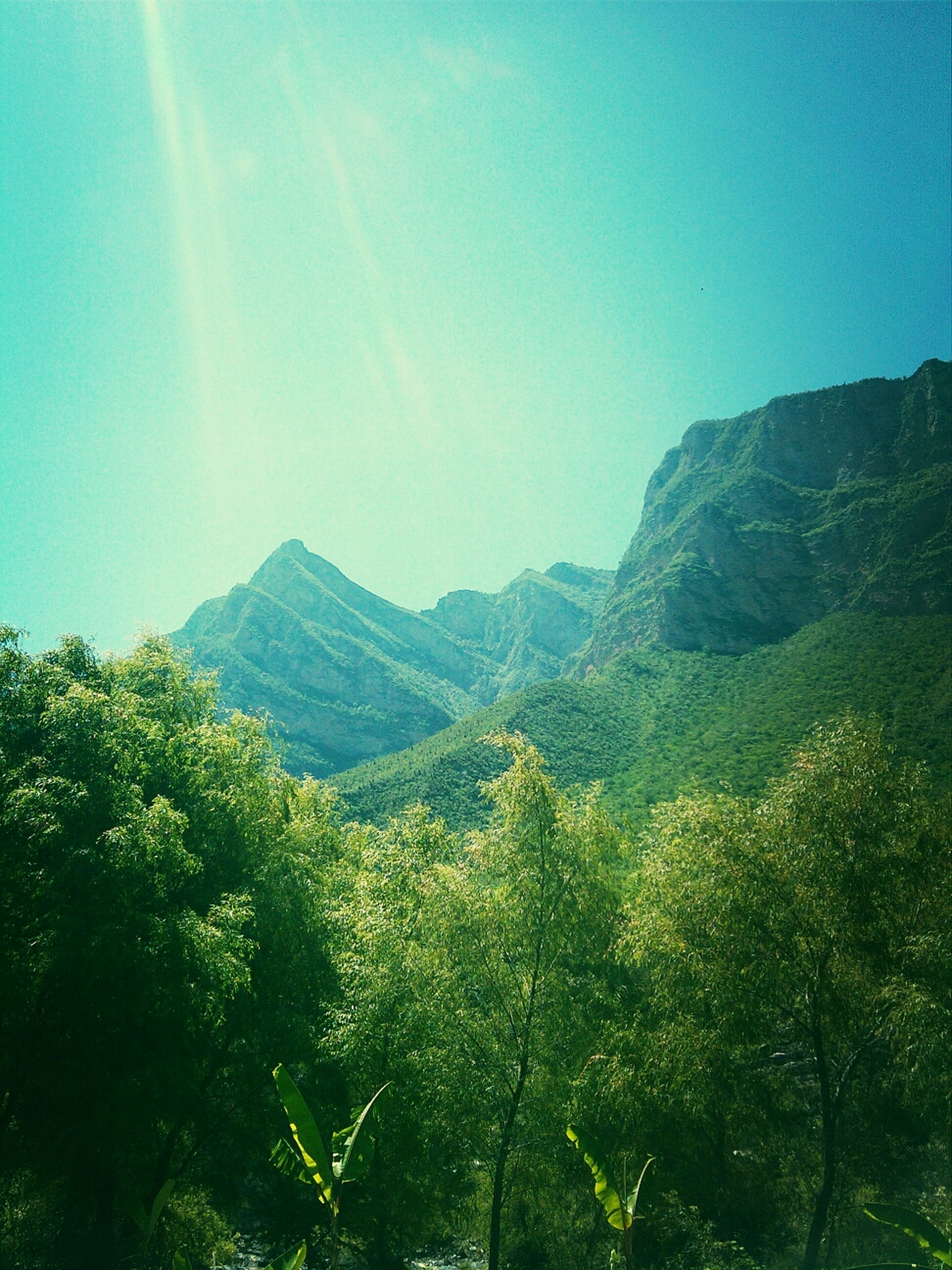 mountain, tranquil scene, tranquility, scenics, beauty in nature, tree, mountain range, blue, nature, clear sky, landscape, green color, growth, idyllic, non-urban scene, sunlight, lush foliage, sky, green, day